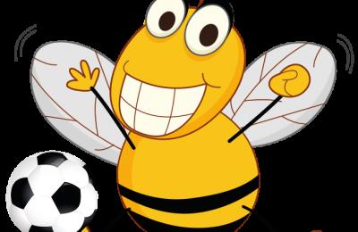 Albinele și bondarii pot să marcheze goluri Albinele și bondarii pot să marcheze goluri