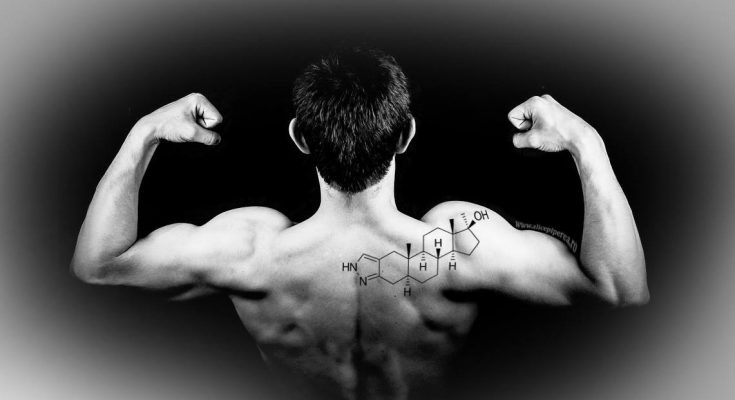 Steroizii anabolizanți – hormonii au întotdeauna două fețe